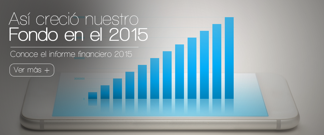 banner-financiero2015